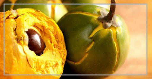 Lúcuma - Beneficios y Propiedades