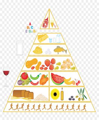 Los Mejores Alimentos que debes consumir 7