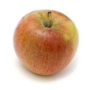 11 Tipos de Manzanas más presentes en el mundo 12