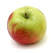 11 Tipos de Manzanas más presentes en el mundo 9