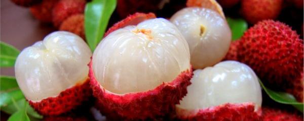 Fruta de Lichi: 8 Beneficios y sus Mitos resueltos 7