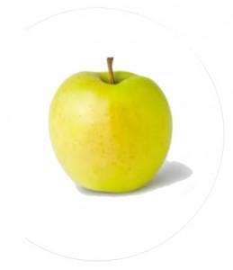 11 Tipos de Manzanas más presentes en el mundo 5