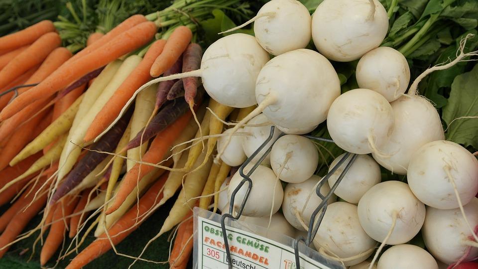 Remolacha Azucarera: Proceso, Cultivo y Diferencias 6