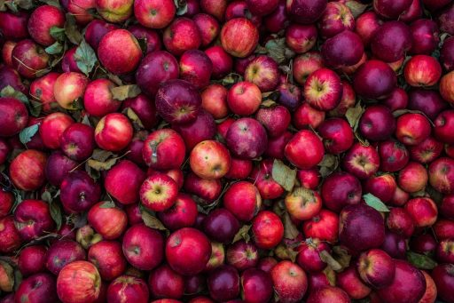 11 Tipos de Manzanas más presentes en el mundo 13