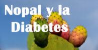 Nopal para la Diabetes ¿Por qué y Cómo consumirlo? 2