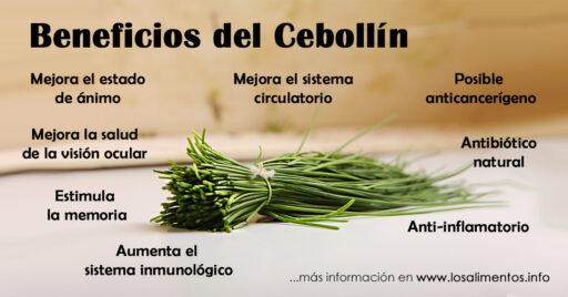 Cebollín: 8 Beneficios y Propiedades 4
